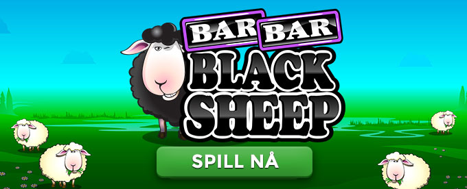 Spill Bar Bar Black Sheep